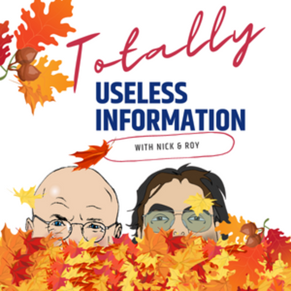 Totally Useless Information with Nick & Roy