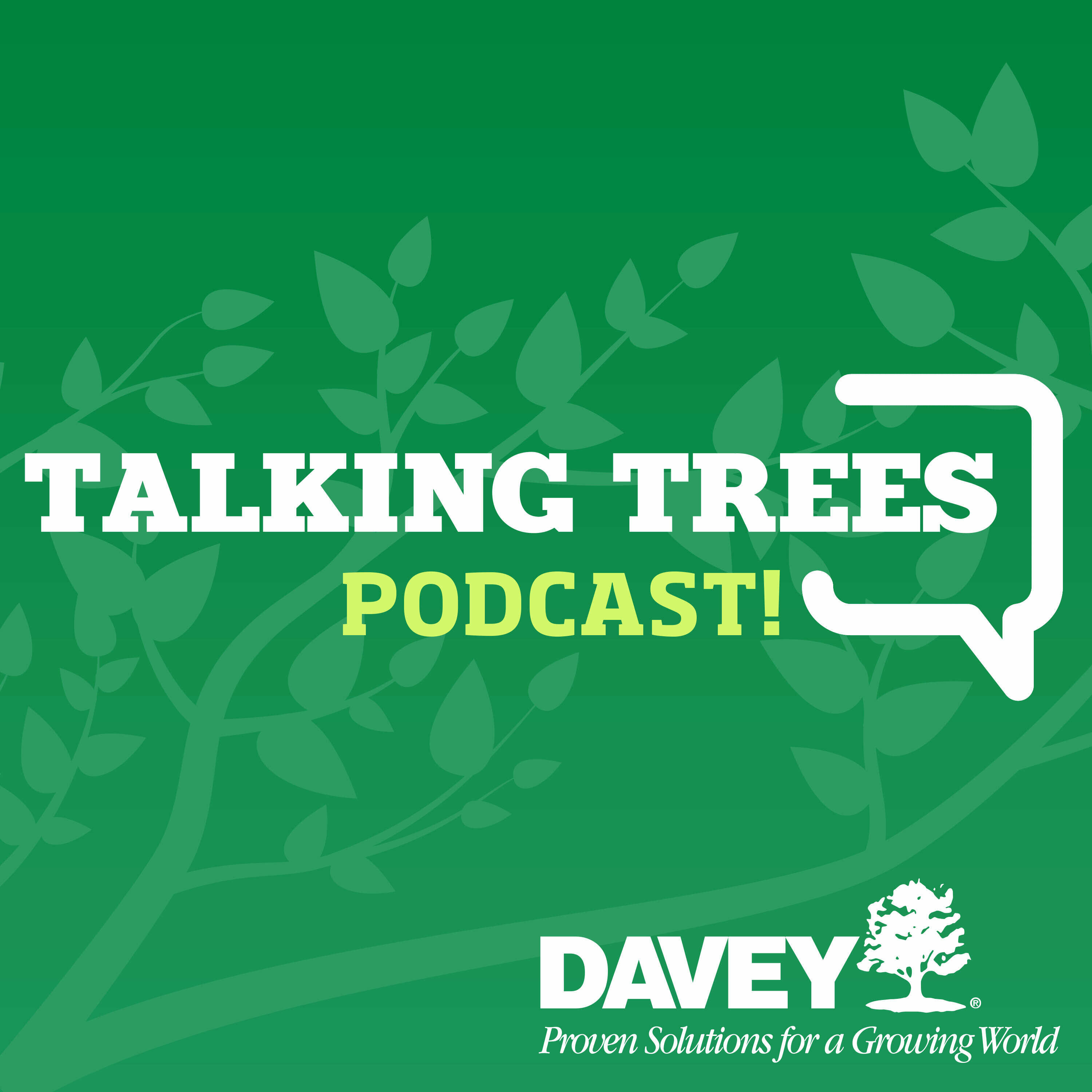 Talking Trees with Davey Tree