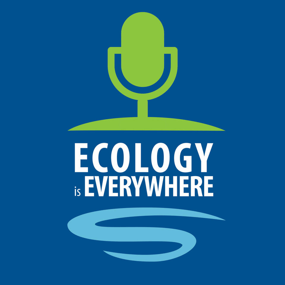 Ecology is Everywhere