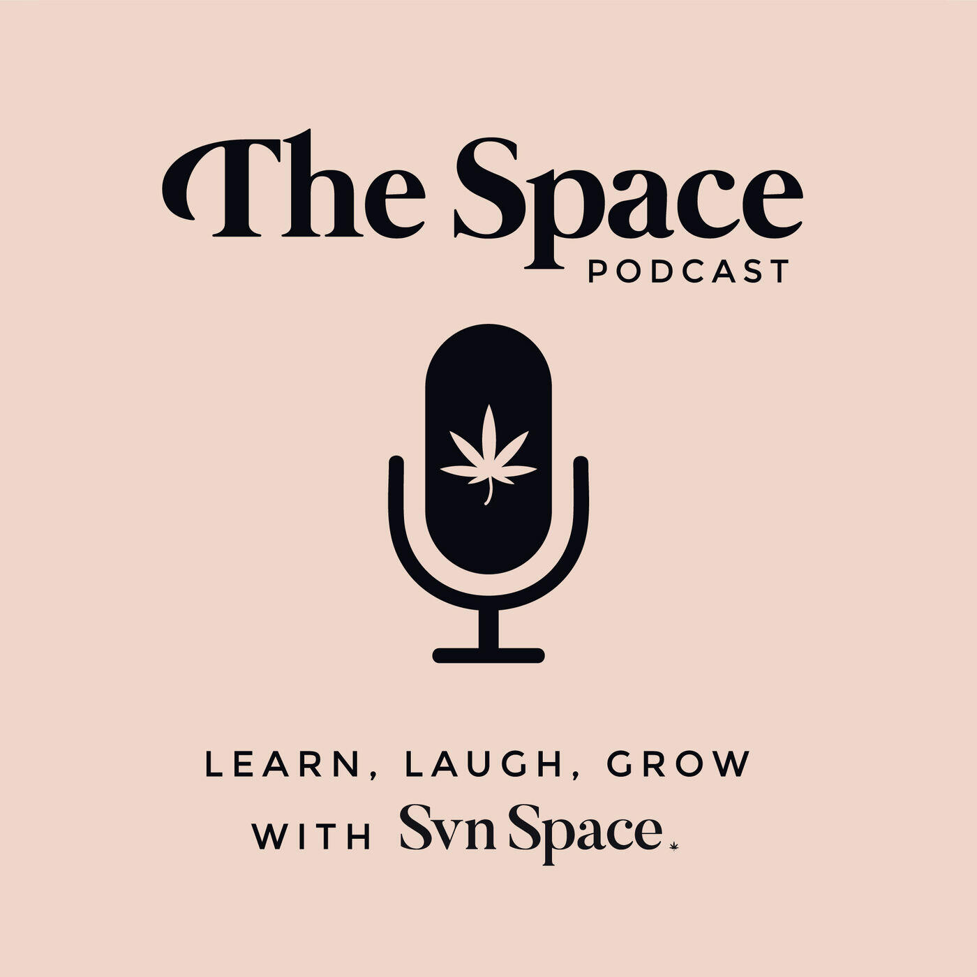 THE Space by Svn Space Podcast