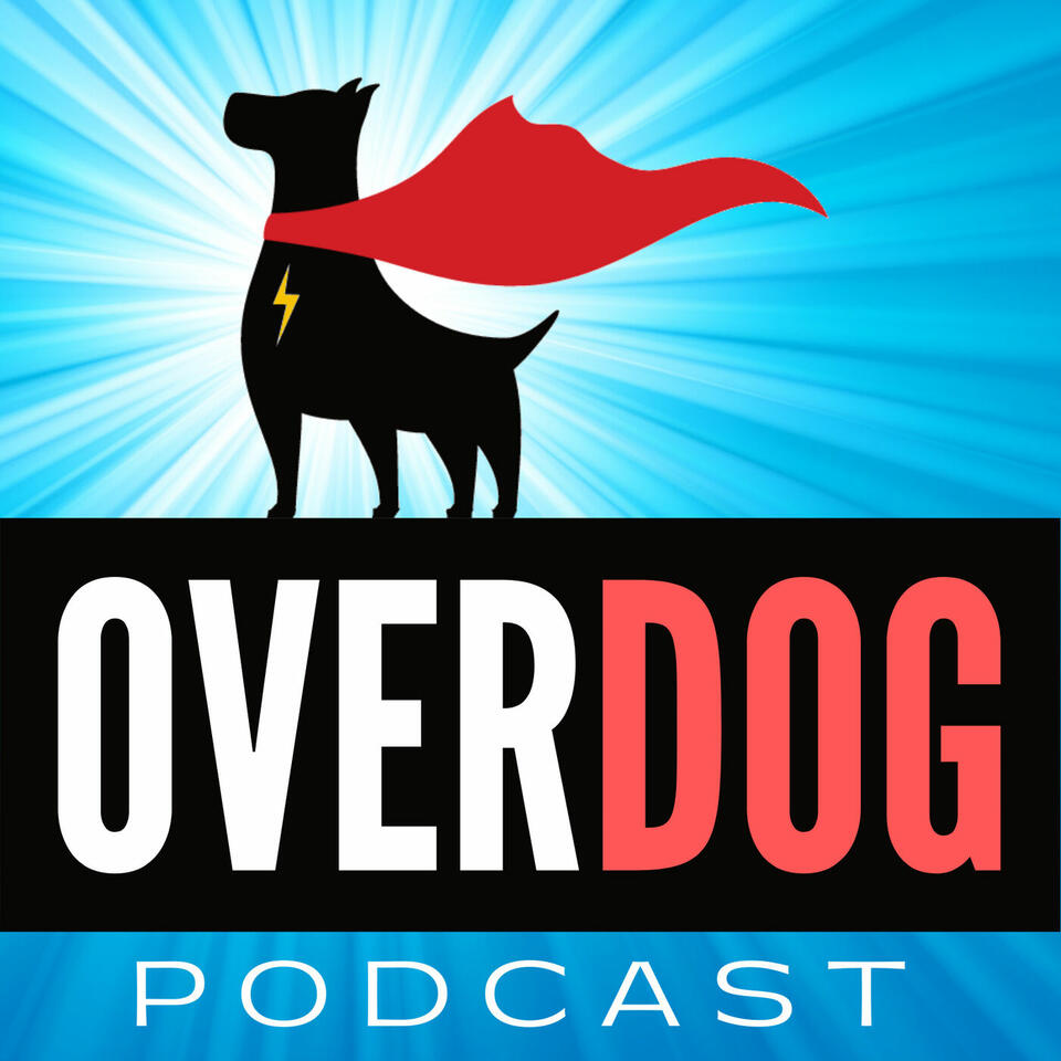 OverDog: Dog Daycare & Boarding Business Tips