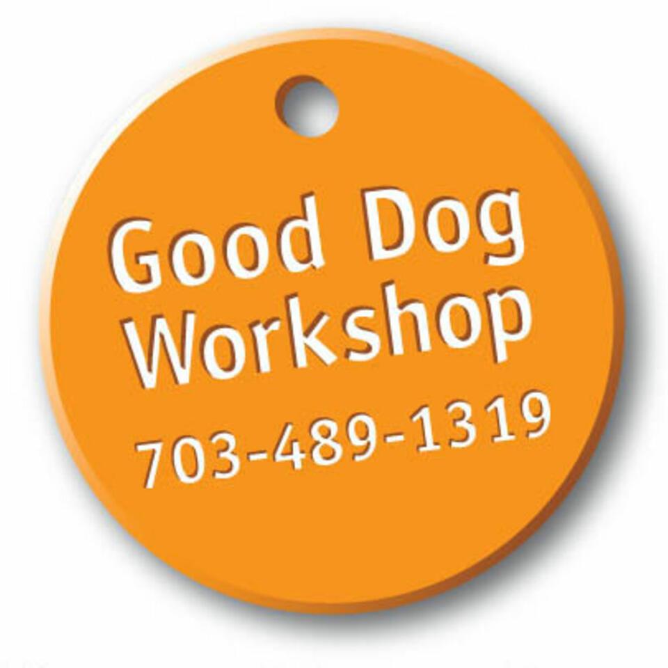 Good Dog Workshop