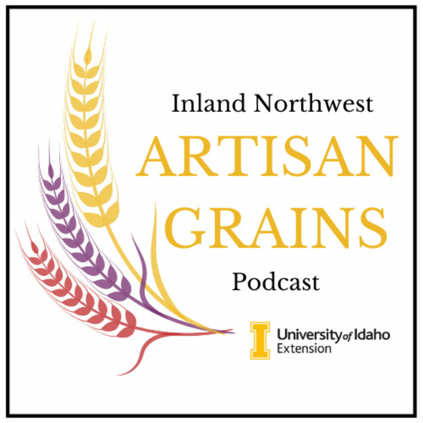 Inland Northwest Artisan Grains Podcast: Unpacking the Grain Shed
