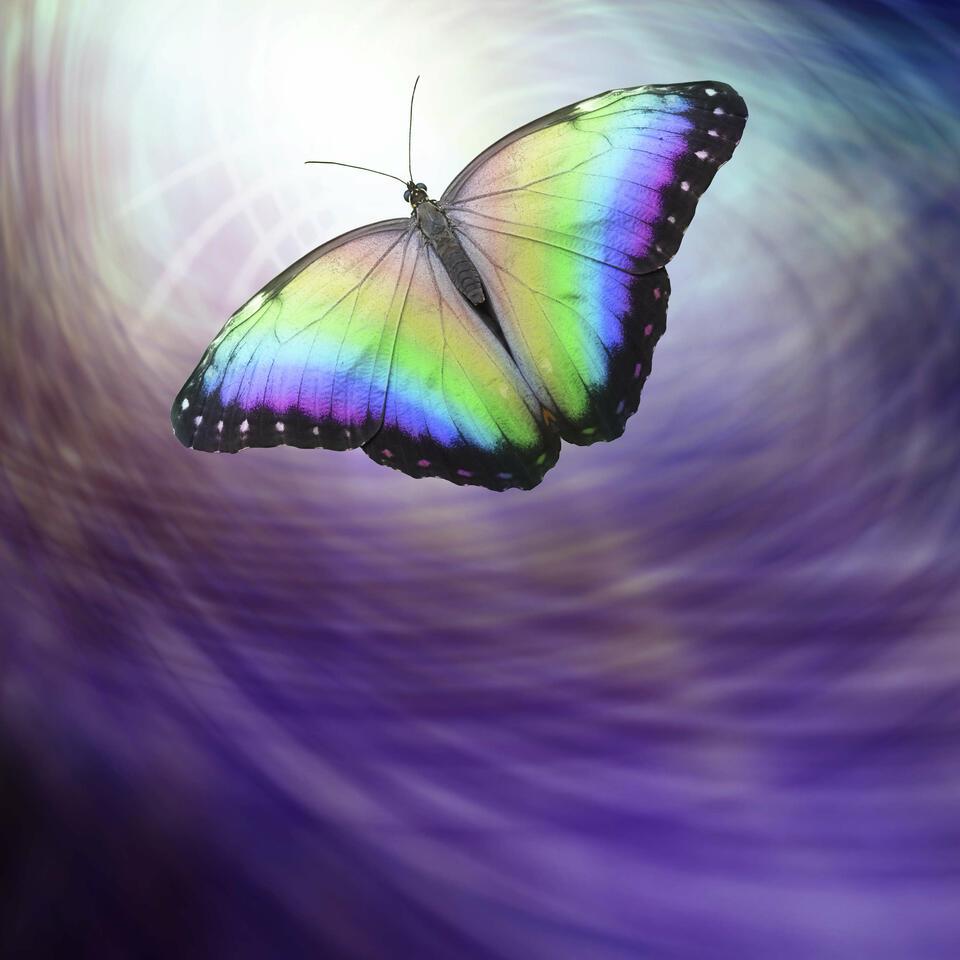 Transpersonal Journey with Irene Siegel