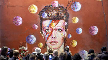 Amy Warner - David Bowie Exhibition